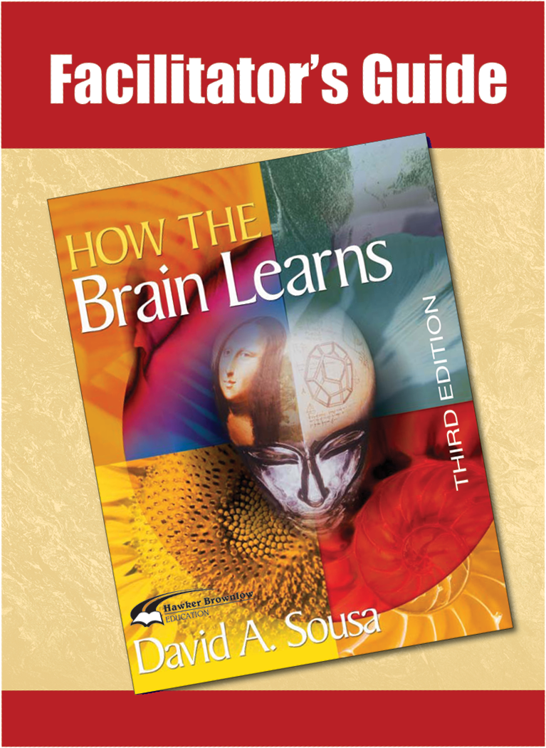 Facilitators Guide to How the Brain Learns, Third Edition