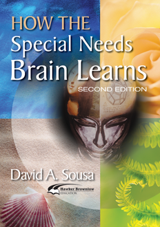How the Special Needs Brain Learns, 2nd Edition