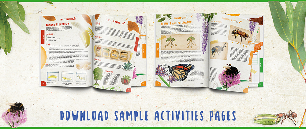 Download Life in a Garden sample activity pages